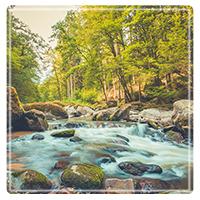 River Place Behavioral Health