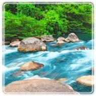 Riverview Behavioral Health